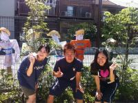 20120825kakashi1.jpg