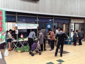 20130518yasaiichi5.jpg