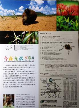20130725imamori1.jpg