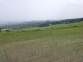 20140616kitafunaji8.jpg