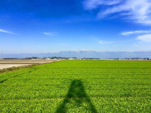 20150330suhara.jpg
