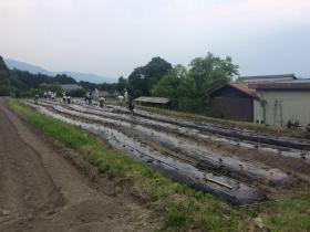 20150605kitafunaji8.jpg