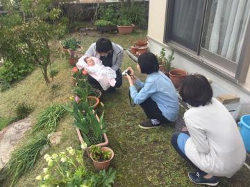 20170410hina2.jpg