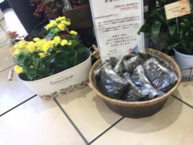 20171118iwagami3.jpg
