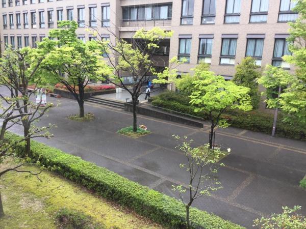 20190439mawashiyomi1.jpg