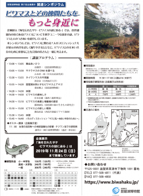 20190826biwamasu2.png