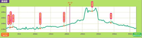 iwatemoriokacitymarathon3.png