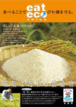 20121119kodawarimai.jpg